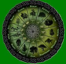 Alberi e astrologia celtica